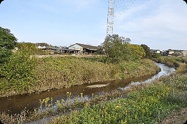 野方大橋 周辺